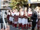 Oplenacka berba 2010_29