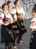 Oplenacka berba 2010_49