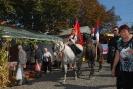 Oplenacka berba 2011_10