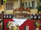 Oplenacka berba 2011_22