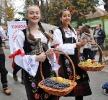 Oplenacka berba 2012_2