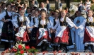 Oplenacka berba 2014_5